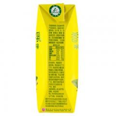 天友利乐钻香蕉奶 12*250ml